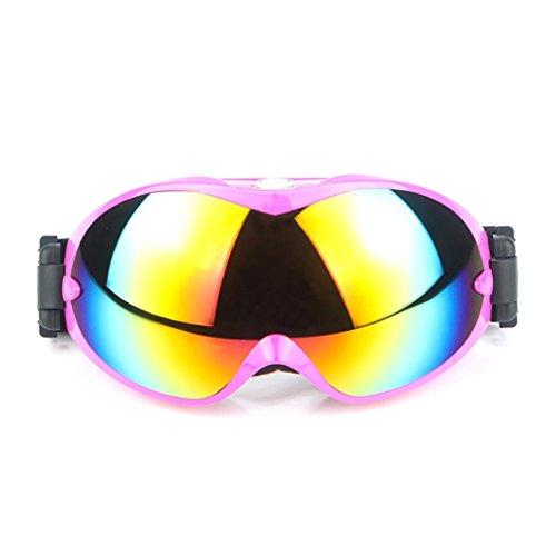 Snowboard Dustproof Sunglasses (Black) - 3