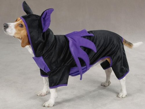 Casual Canine Purple & Black Hooded Flying Bat Dog Halloween Dog Costume w/ Wings Medium