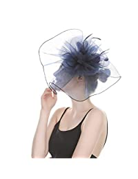 AWAYTR Woman Sinamay Fascinator Hat – Mesh Net Hat Feather Derby Hat for Party
