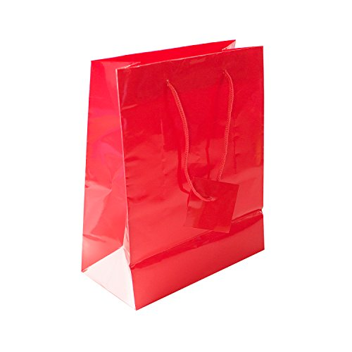 Solid Colored Blank Paper Party Gift Bags with String Handles for Birthday Favors, Snacks, Wedding Bridal, Decoration, Arts & Crafts, Event Supplies (12 Bags) by Super Z Outlet (Red)