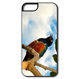 PTCY IPhone 5/5s Design Vintage Free As Bird