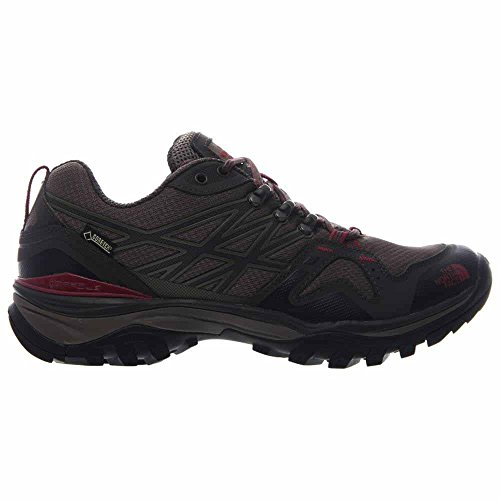 North Brown The Fastpack Hedgehog Face Gtx Red Twwdq4UF