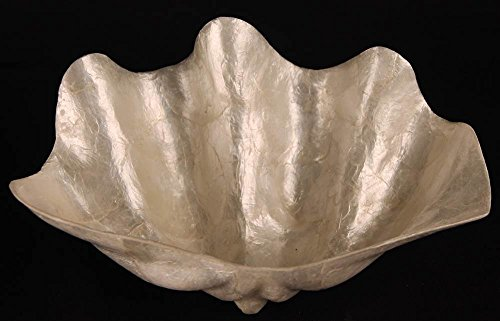 Cheung's Large Shell Bowl
