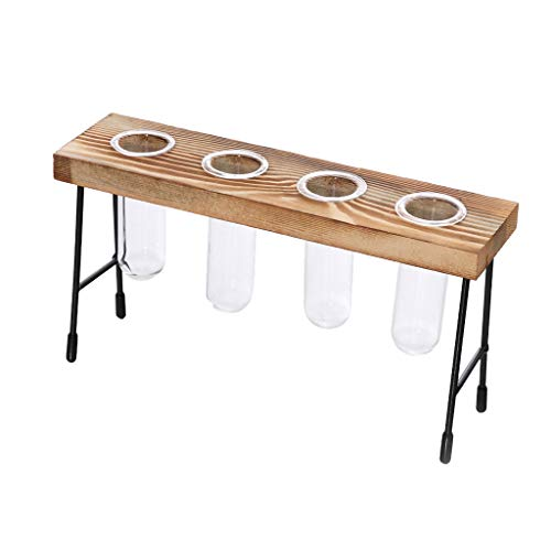 (NszzJixo9 Table Desk Test Tube Glass, Hydroponic Vase Flower Plant Pot Wooden Tray - Tabletop Succulent Air Plants Holder for Succulent Fern Moss (C))
