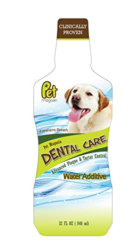 [Made in USA] Dental Care Water Additive Solution for Dogs (32 OZ) by Pet Magasin