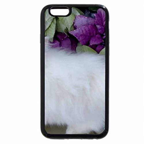 iPhone 6S Case, iPhone 6 Case (Black & White) - Gorgeous Christmas Cat With Purple Poinsettia