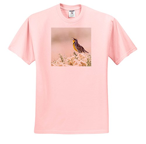 3dRose Danita Delimont - Birds - USA, Utah, Antelope Island, Western Meadowlark Sings From a sagebrush. - T-Shirts - Light Pink Infant Lap-Shoulder Tee (24M) (TS_260202_73) - Meadowlark Three Light