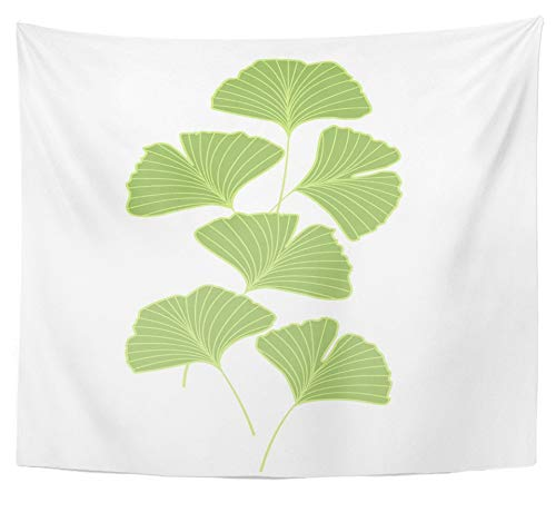 Ginko Leaf Wall - Emvency Tapestry Polyester Fabric Print Home Decor Leaf Ginkgo Biloba Leaves Ginko Alternative Antioxidant Asia Autumn Botany Wall Hanging Tapestry for Living Room Bedroom Dorm 50x60 inches