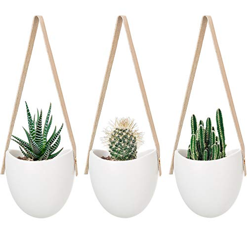(Mkono Ceramic Hanging Planter Succulent Air Plant Flower Pot Wall Decor, Set of 3)