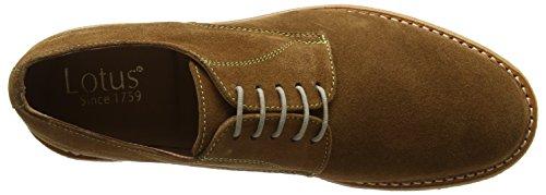 Zapatos Hombre Lotus Cognac Marrón Derby Alexander U5xYqw8