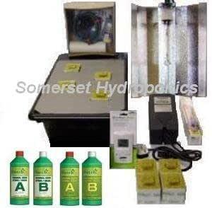 GT205 NFT 2-4 Plant 250 W filtro UV Kit Grow hidropónica: Amazon ...