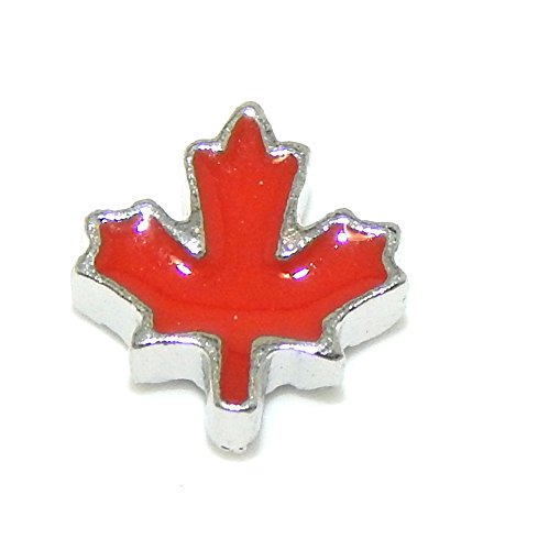 pro-jewelry-red-autumn-leaf-mini-charm-for-pendant-lockets-0109