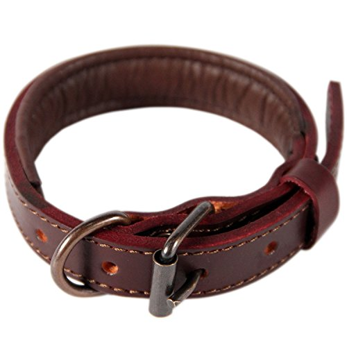 Logical Leather Padded Dog Collar - Best Full Grain Heavy Duty Genuine Leather Collar - Brown - (Designer Dog Collar Leash Clothes)