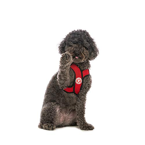Gooby - Comfort X Step-in Harness, Choke Free Small Dog Harness with Micro Suede Trimming and Patented X Frame, Red, Large