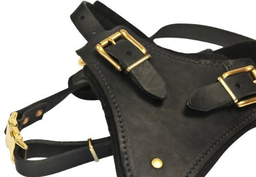 Dean and Tyler The Blade with Handle Brass Belt Style Buckles Leather Dog Harness, Black, Large - Fits Girth Size: 31-Inch to 41-Inch by Dean & Tyler (Image #2)
