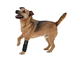 Extreme-Neoprene Joint Protective Reflective Pet Sleeves, Black, LG