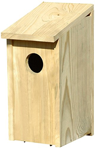 (Heartwood 138A Screech Owl Decorative Bird House )