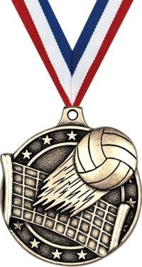Gold Volleyball Medals - 2