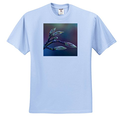 Price comparison product image 3dRose Danita Delimont - Botanical - USA, Washington State, Seabeck. Bigleaf Maple Tree Buds. - T-Shirts - Youth Light-Blue-T-Shirt XS(2-4) (ts_260447_59)