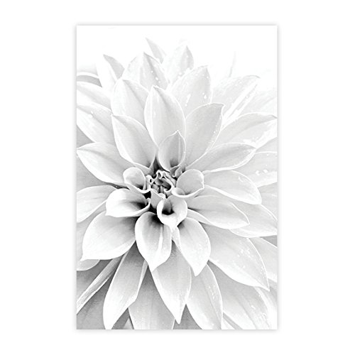 Amazon.com: Floral Wall Art, Bathroom Wall Decor, Abstract Floral ...