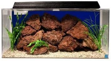SeaClear-System-II--50-Gallon-Rectangular-Acrylic-Aquarium