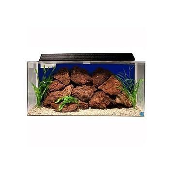 Cleaning & Maintenance Pet Supplies Open-Minded Aquarium 10 Piece Cleaning Brush Set 24hr Rapid Dispatch Uk