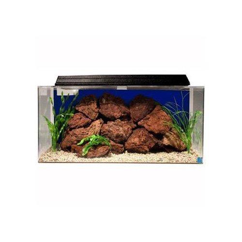 SeaClear 50 gal System II Acrylic Aquarium, 36 by 15 by 16, Cobalt Blue
