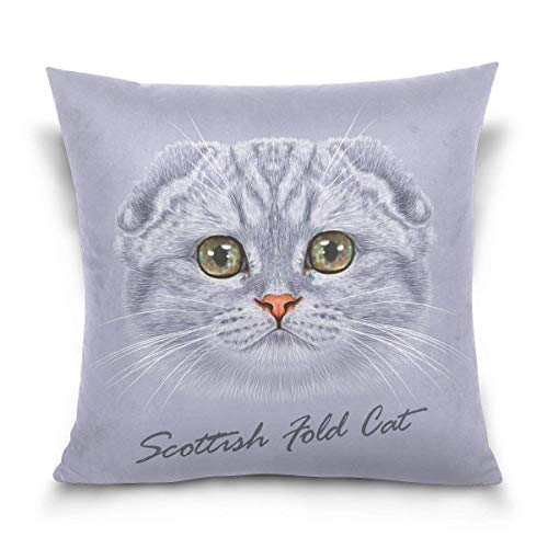 Pillow Fold (wuhandeshanbaosheng Cute Scottish Fold Cat Decorative Square Throw Pillow Case Cushion Cover for Sofa Bedroom Car Double-Sided Design 18 x 18 inch)