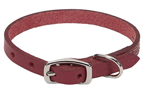 Coastal Pet Products Circle T Rustic Leather Town Dog Collar, 1