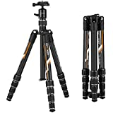 K&F Concept Professional Carbon Fiber Camera Tripod with 360 Degree Ball Head Quick Release Plate for DSLR Camera, Load up to 26.5 pounds/12 kilograms