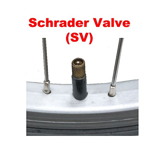 "Tube, 12"" 1/2 x 2 1/4"" 32mm Schrader Valve TAC 9 Brand. Kids, Child, Stroller, Scooter or Youth Bike."