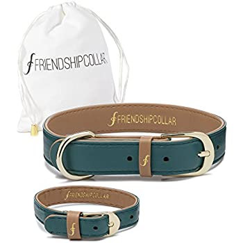 FriendshipCollar Dog Collar and Matching Bracelet Set - The Classic Pup: Racing Green - Vegan Leather - 8 Sizes Available