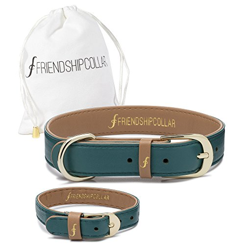 FriendshipCollar Dog Collar and Friendship Bracelet - Racing Green - Medium