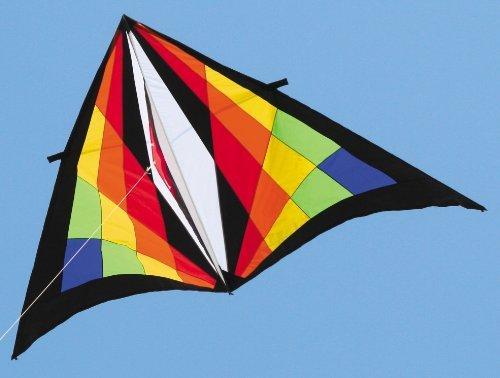 9-ft. Teknacolor Delta Kite by Premier Kites
