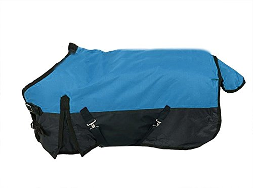 41ztglNCrfL - Derby Originals 600D Nylon Horse Turnout Winter Blanket Miniature and Pony Sizes
