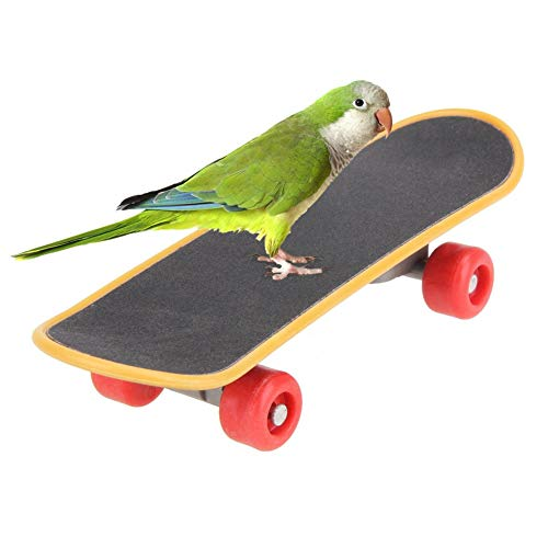 Bird Toys - Bird Mini Training Skateboard Plastic Stents Scrub Scooter Skate Boarding Toys Four Wheel Street - Small Ring Basketball Tree Talk Parrotlet Red That Add Jw