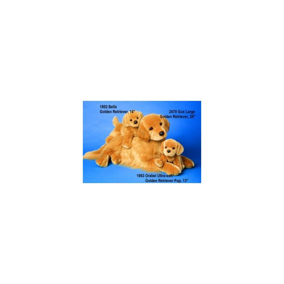 Douglas Orabel Golden Retriever Puppy
