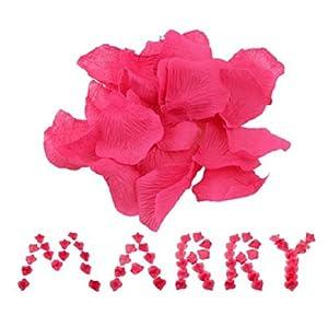 Liroyal Big Value Rose Petals 55