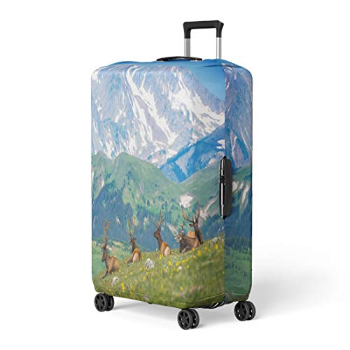 (Semtomn Luggage Cover North American Elks Rocky Mountain Meadow in Colorado United States Resting Travel Suitcase Cover Protector Baggage Case Fits 18-22 Inch)