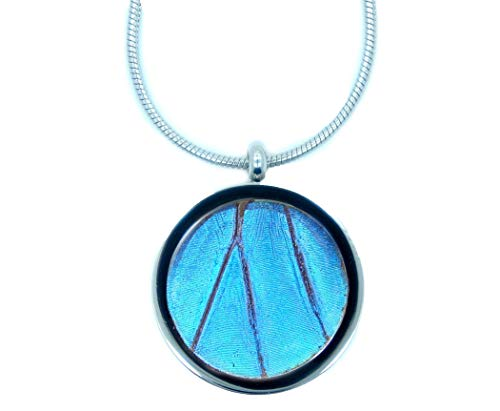 Real Blue Morpho Butterfly Wing Necklace Pendant - Insect Jewelry