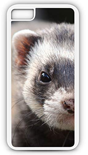 iPhone 7 Plus 7+ Case Sable Ferret Weasel Pet Prairie Dog Predator Customizable by TYD Designs in White Plastic Black Rubber Tough Case