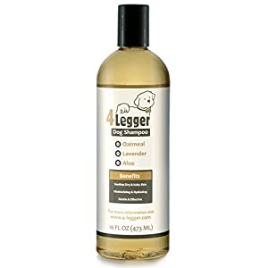 4-Legger Certified Organic Oatmeal Dog Shampoo with Aloe and Lavender Essential Oil – All Natural Safely Soothe, Condition and Moisturize Normal to Dry, Itchy Sensitive Skin – Made in USA – 16 oz