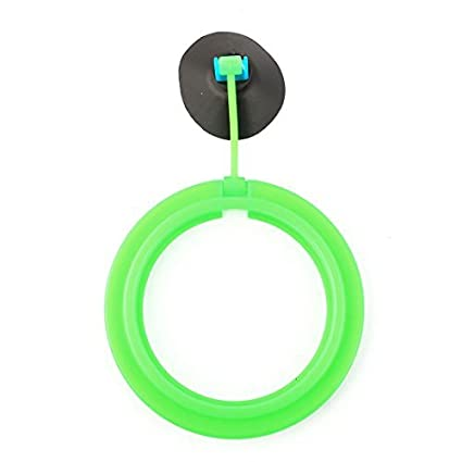 Amazon.com : eDealMax acuario pecera Montaje de ventosa flotante Alimentación La alimentación de la herramienta del anillo del círculo : Pet Supplies