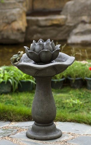 Amazoncom Jeco Lotus Flower And Frog Tiers Water Fountain