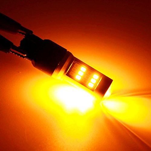 Xenon Dual Filament Lamp - 9