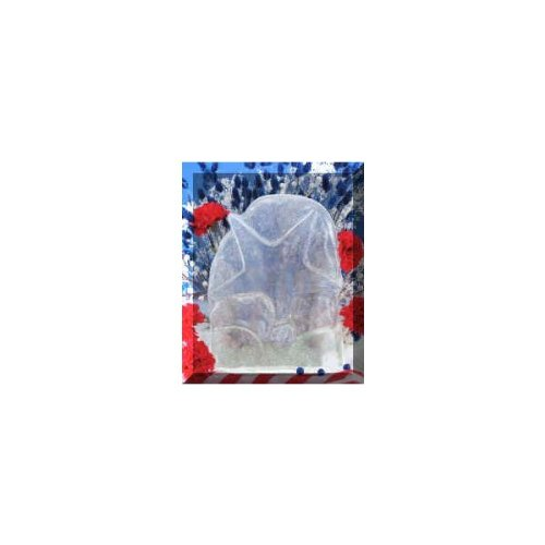 Reusable Star Ice Sculpture Mold product image