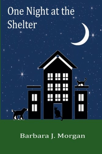 Read Online One Night at the Shelter ebook