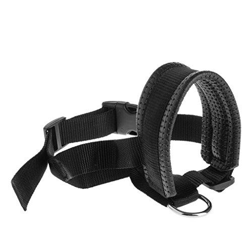 Padded Collar Gentle Pulling Training