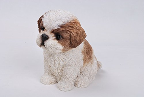 Hi-Line Sitting Shih Tzu Puppy FigurineBrown/White