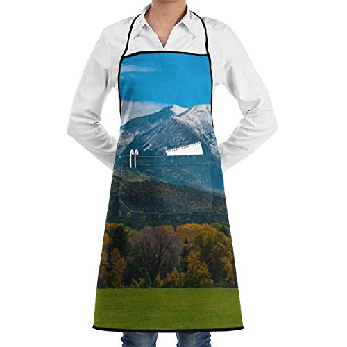 KasaBlaro Roaring Fork Valley Map Print Bib Aprons Adjustable Home Depot Apron Kitchen Chef Apron with Pockets for Women and Men